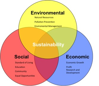 the definition and importance of sustainability With the rapid development and change in the uae, sustainability is more  important than ever there is no one definition of sustainability but it is generally.